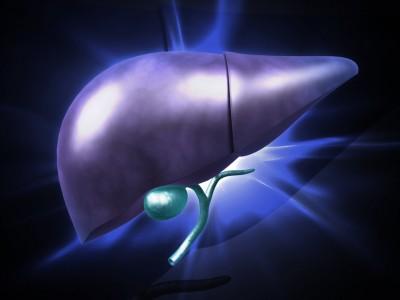 liver purple